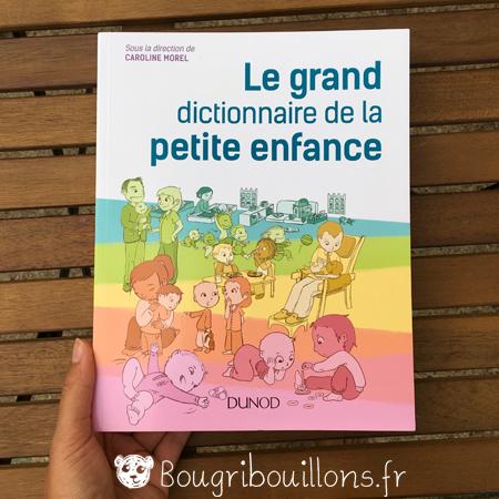 Couverture Le grand dictionnaire de la petite enfance